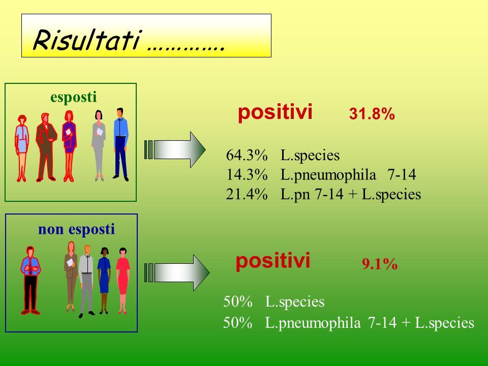 Risultati …………. positivi positivi esposti 31.8% 64.3% L.species