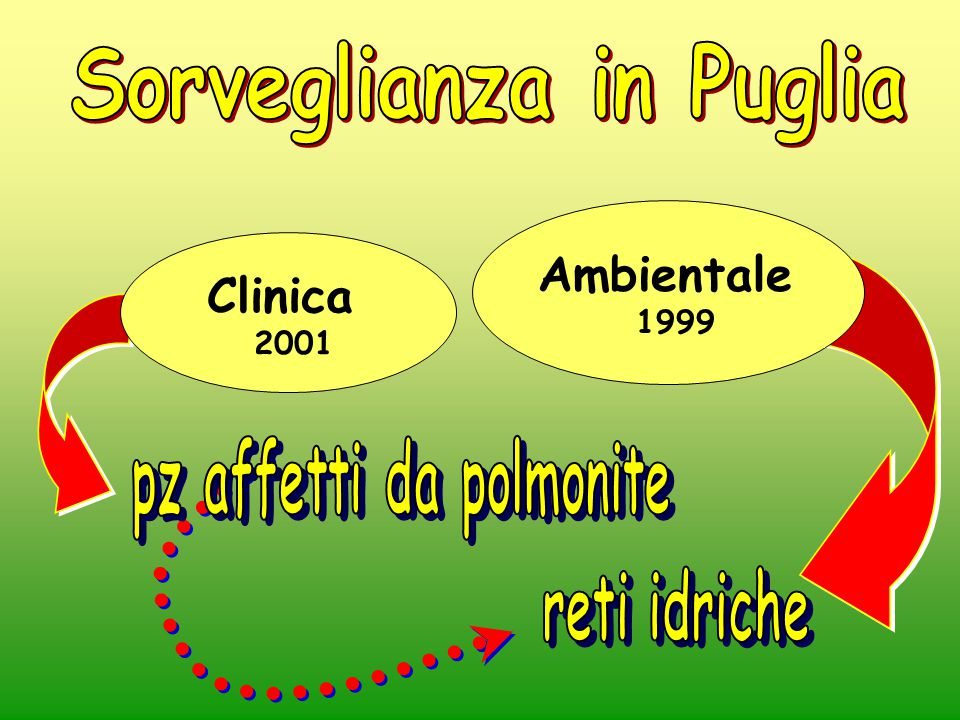 Sorveglianza in Puglia pz affetti da polmonite