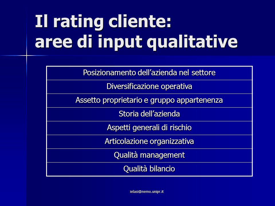 Il rating cliente: aree di input qualitative