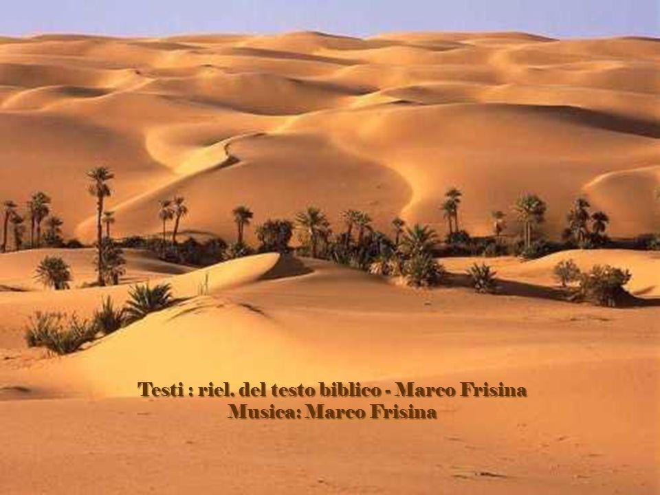 Testi : riel. del testo biblico - Marco Frisina