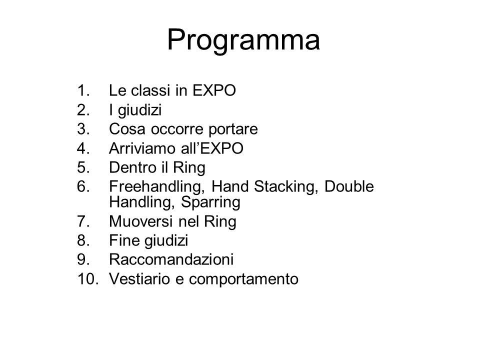 Programma Le classi in EXPO I giudizi Cosa occorre portare