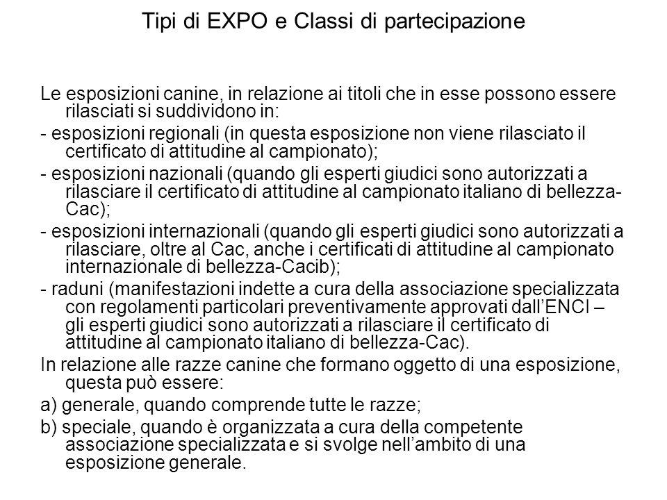 Tipi di EXPO e Classi di partecipazione