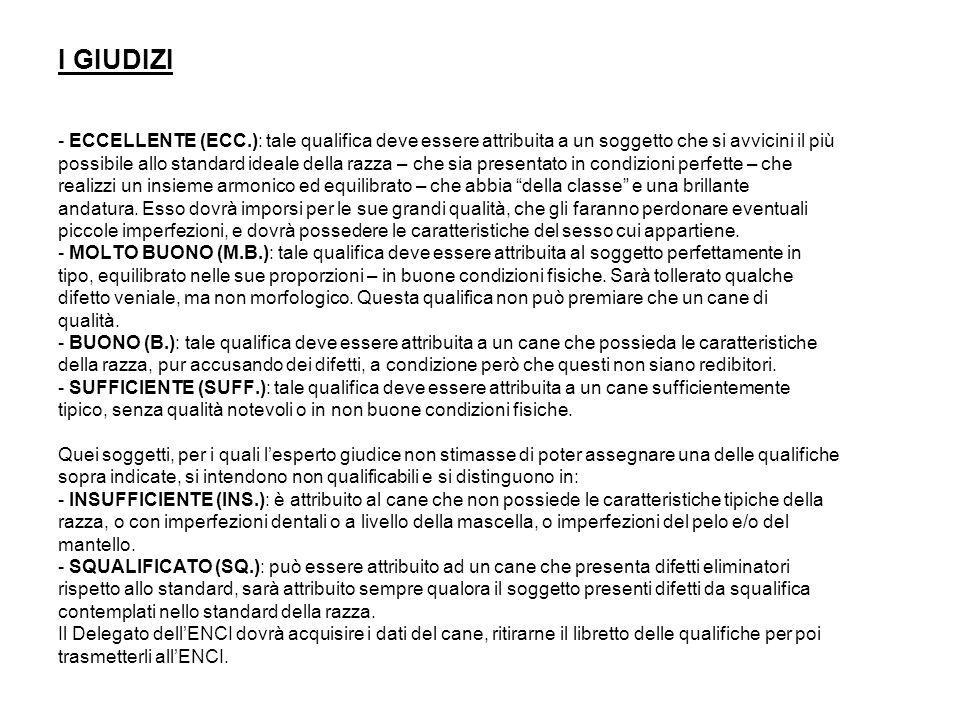 I GIUDIZI - ECCELLENTE (ECC.): tale qualifica deve essere attribuita a un soggetto che si avvicini il più.