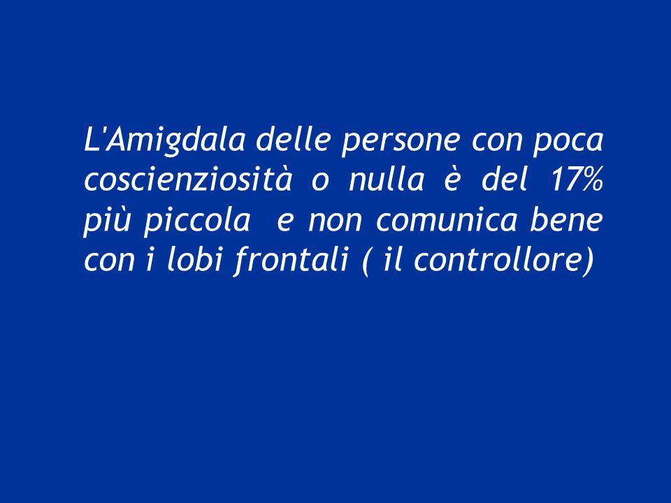 L Amigdala delle persone con poca coscienziosità o nulla è del 17% più piccola e non comunica bene con i lobi frontali ( il controllore)