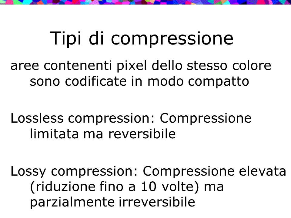 Tipi di compressione aree contenenti pixel dello stesso colore sono codificate in modo compatto.