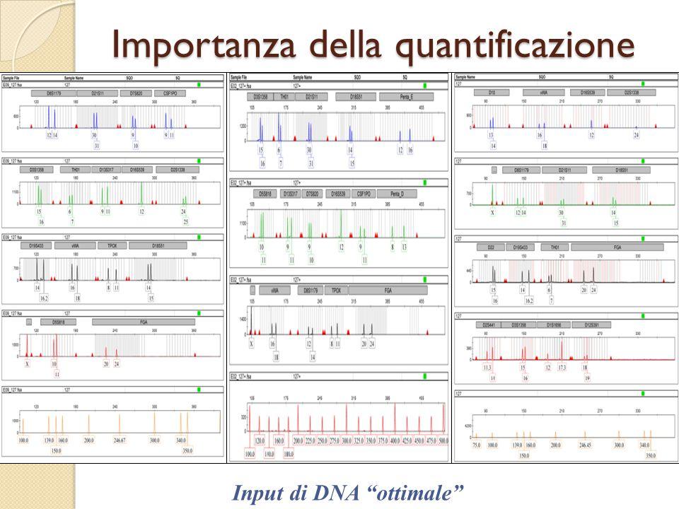 Importanza della quantificazione