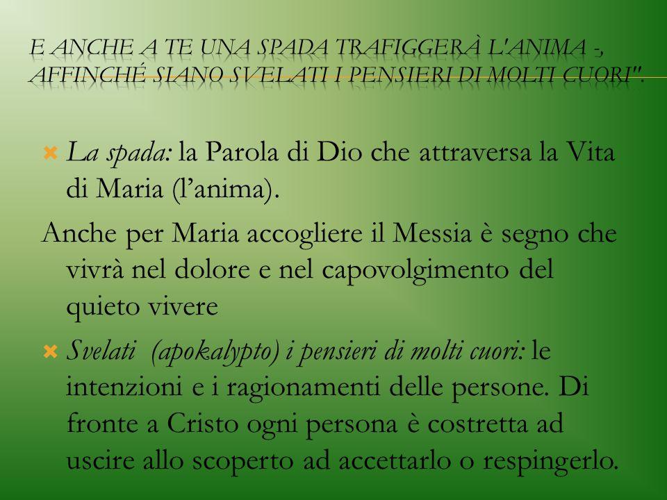 La spada: la Parola di Dio che attraversa la Vita di Maria (l'anima).