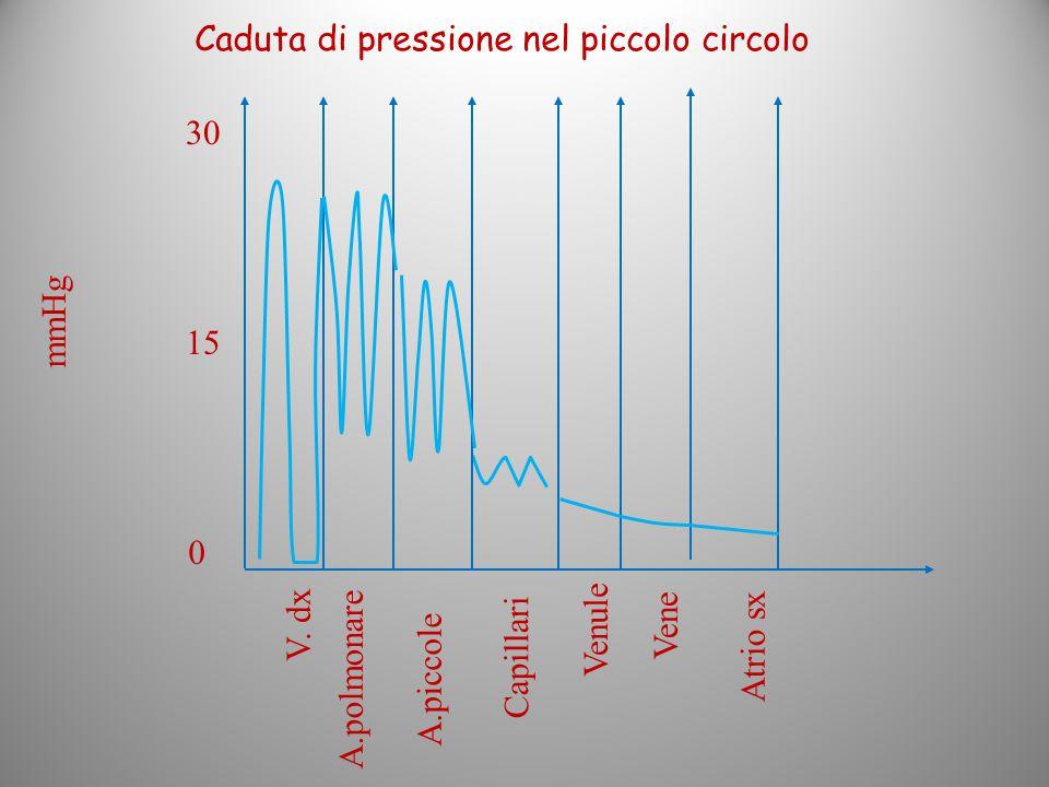 Caduta di pressione nel piccolo circolo
