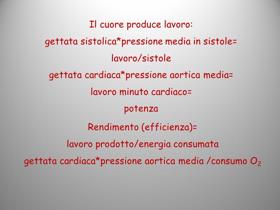 Il cuore produce lavoro: gettata sistolica*pressione media in sistole=