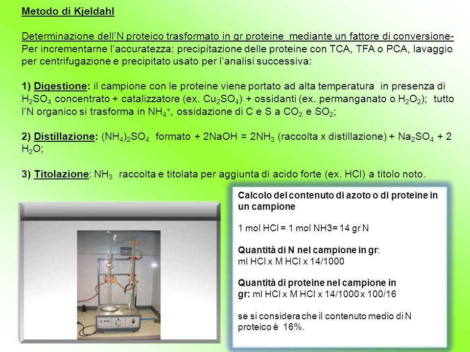Metodo di Kjeldahl