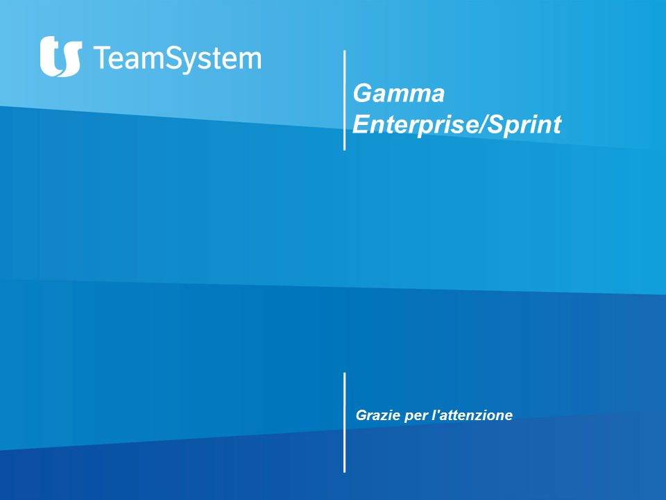 Gamma Enterprise/Sprint