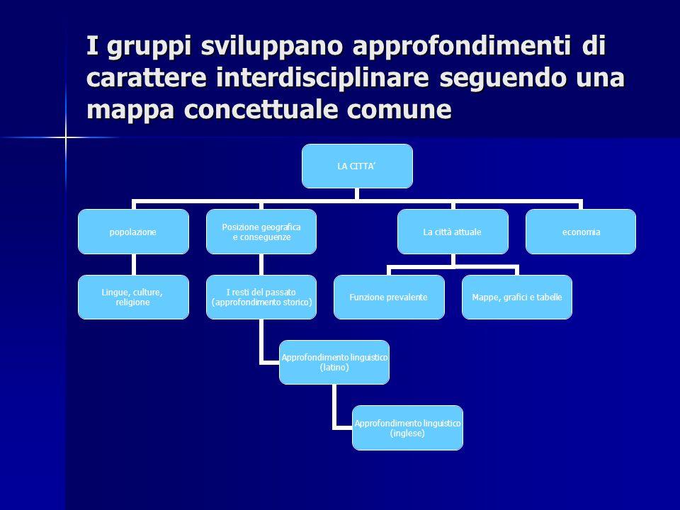I gruppi sviluppano approfondimenti di carattere interdisciplinare seguendo una mappa concettuale comune