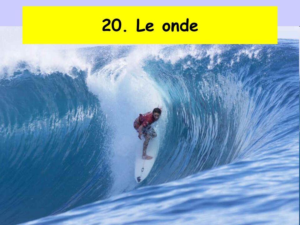 20. Le onde