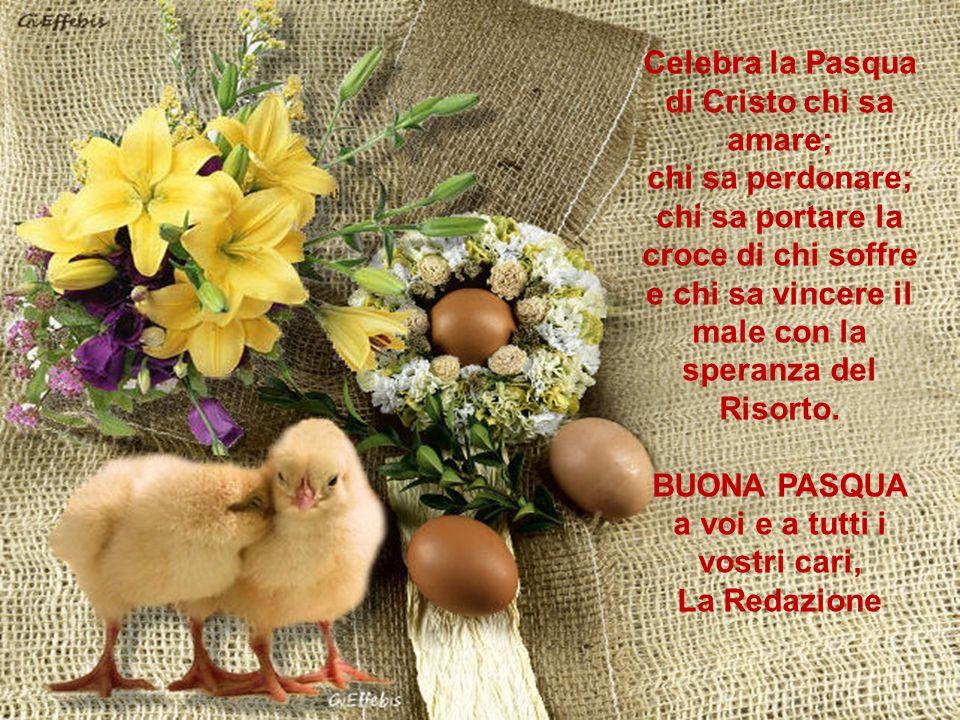 Celebra la Pasqua di Cristo chi sa amare;