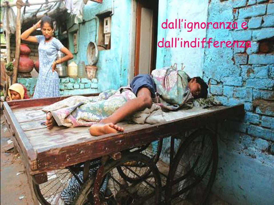 dall'ignoranza e dall'indifferenza