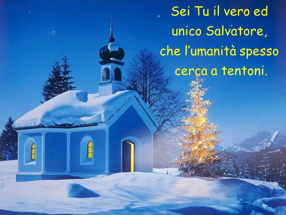 Sei Tu il vero ed unico Salvatore, che l'umanità spesso cerca a tentoni.