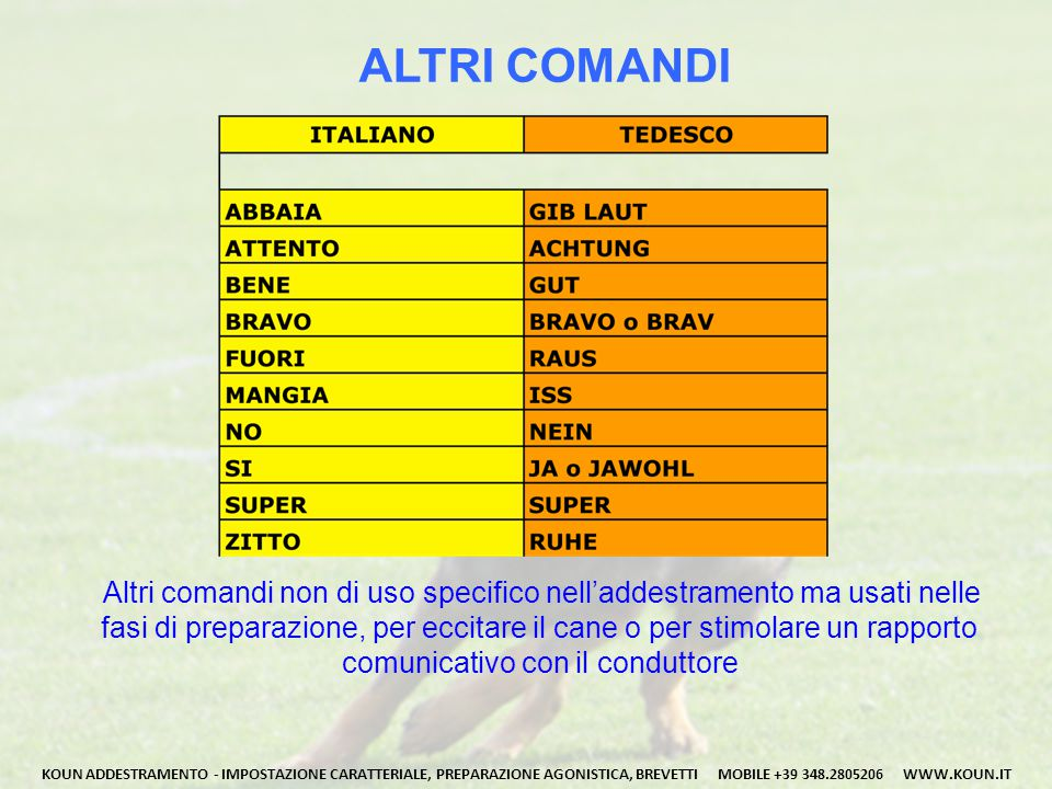 ALTRI COMANDI Altri comandi non di uso specifico nell'addestramento ma usati nelle.