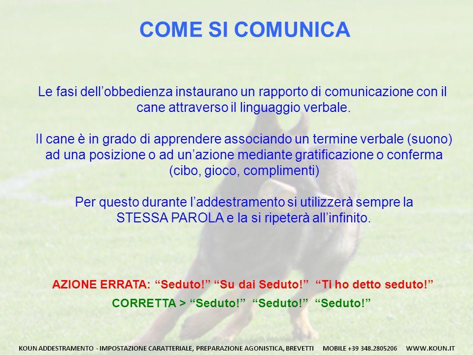 COME SI COMUNICA Le fasi dell'obbedienza instaurano un rapporto di comunicazione con il. cane attraverso il linguaggio verbale.