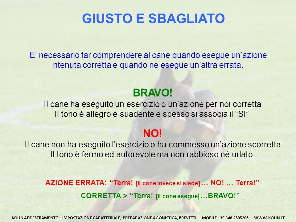 GIUSTO E SBAGLIATO BRAVO! NO!