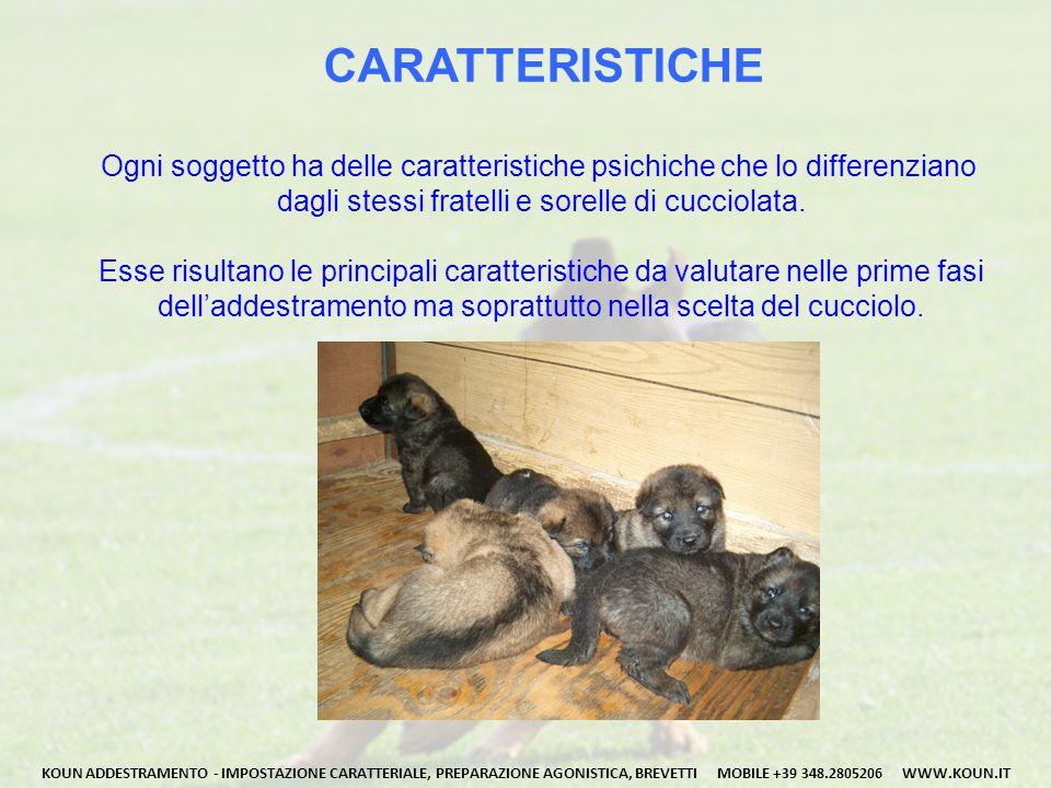 CARATTERISTICHE Ogni soggetto ha delle caratteristiche psichiche che lo differenziano. dagli stessi fratelli e sorelle di cucciolata.