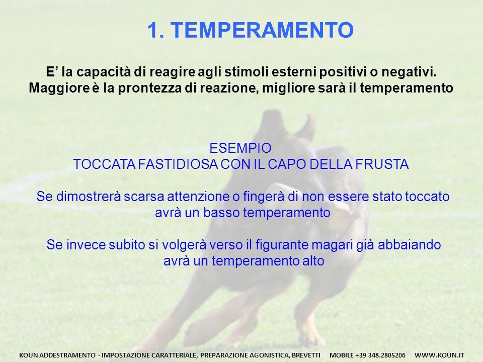 1. TEMPERAMENTO E' la capacità di reagire agli stimoli esterni positivi o negativi.
