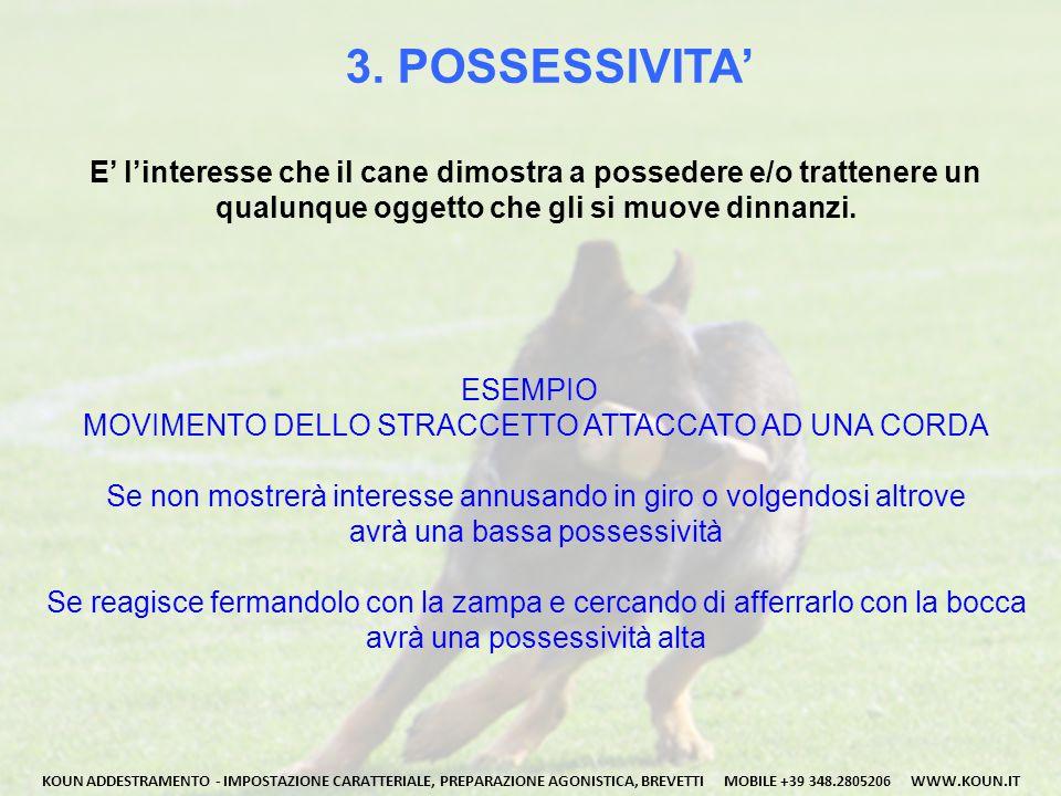 3. POSSESSIVITA' E' l'interesse che il cane dimostra a possedere e/o trattenere un. qualunque oggetto che gli si muove dinnanzi.