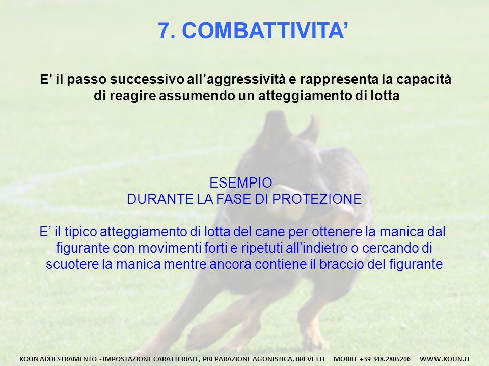 7. COMBATTIVITA' E' il passo successivo all'aggressività e rappresenta la capacità. di reagire assumendo un atteggiamento di lotta.