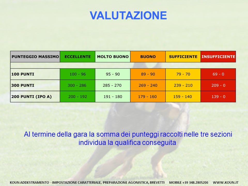 VALUTAZIONE Al termine della gara la somma dei punteggi raccolti nelle tre sezioni. individua la qualifica conseguita.