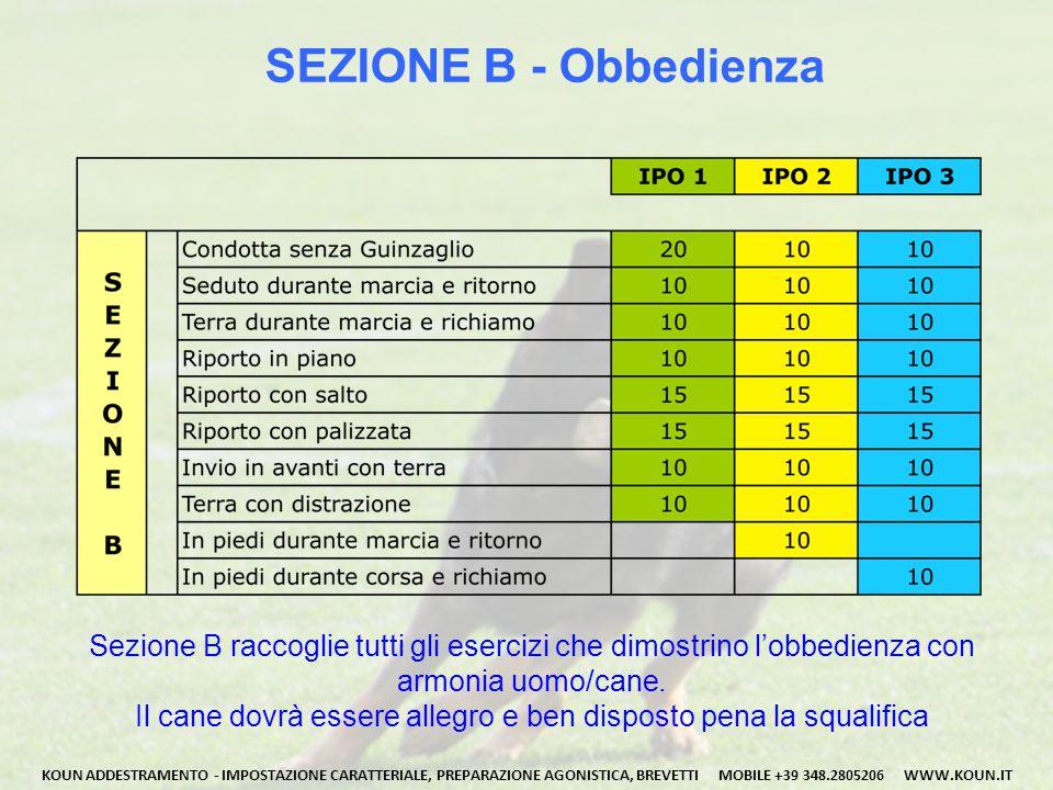 SEZIONE B - Obbedienza Sezione B raccoglie tutti gli esercizi che dimostrino l'obbedienza con. armonia uomo/cane.