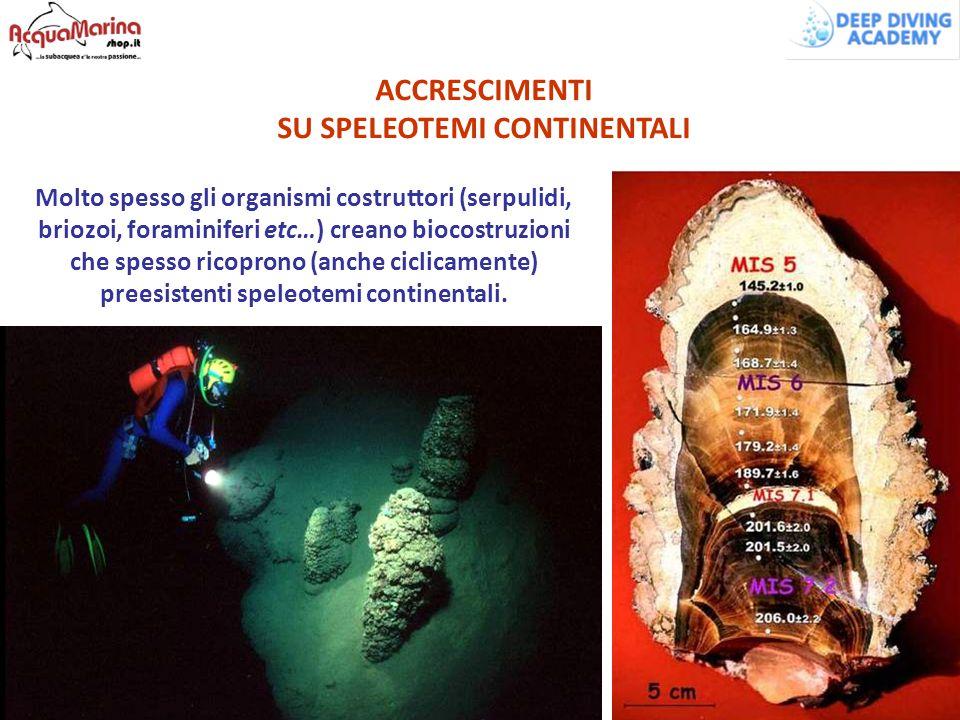 SU SPELEOTEMI CONTINENTALI preesistenti speleotemi continentali.