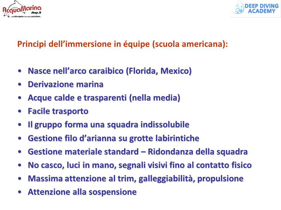 Principi dell'immersione in équipe (scuola americana):
