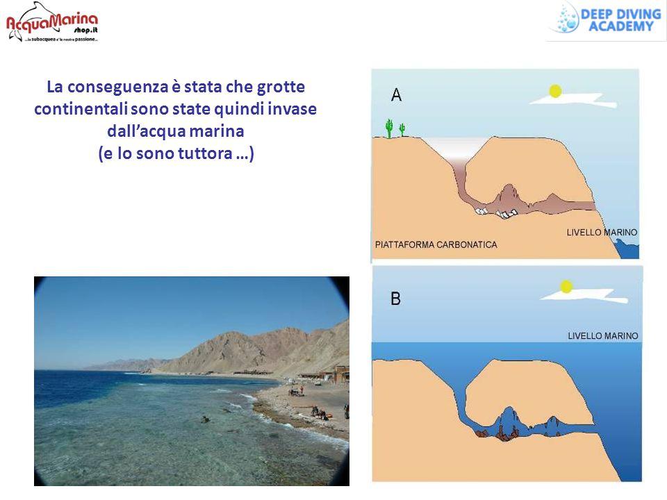 La conseguenza è stata che grotte continentali sono state quindi invase dall'acqua marina