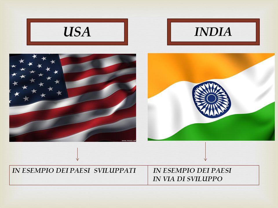USA INDIA IN ESEMPIO DEI PAESI SVILUPPATI IN ESEMPIO DEI PAESI