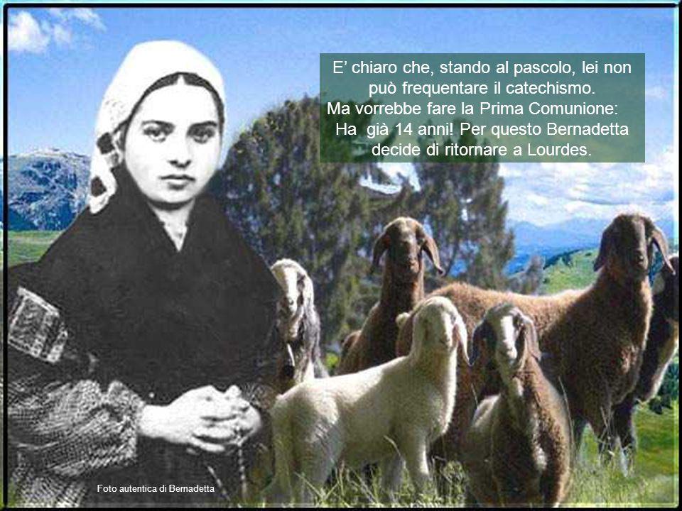Ha già 14 anni! Per questo Bernadetta decide di ritornare a Lourdes.