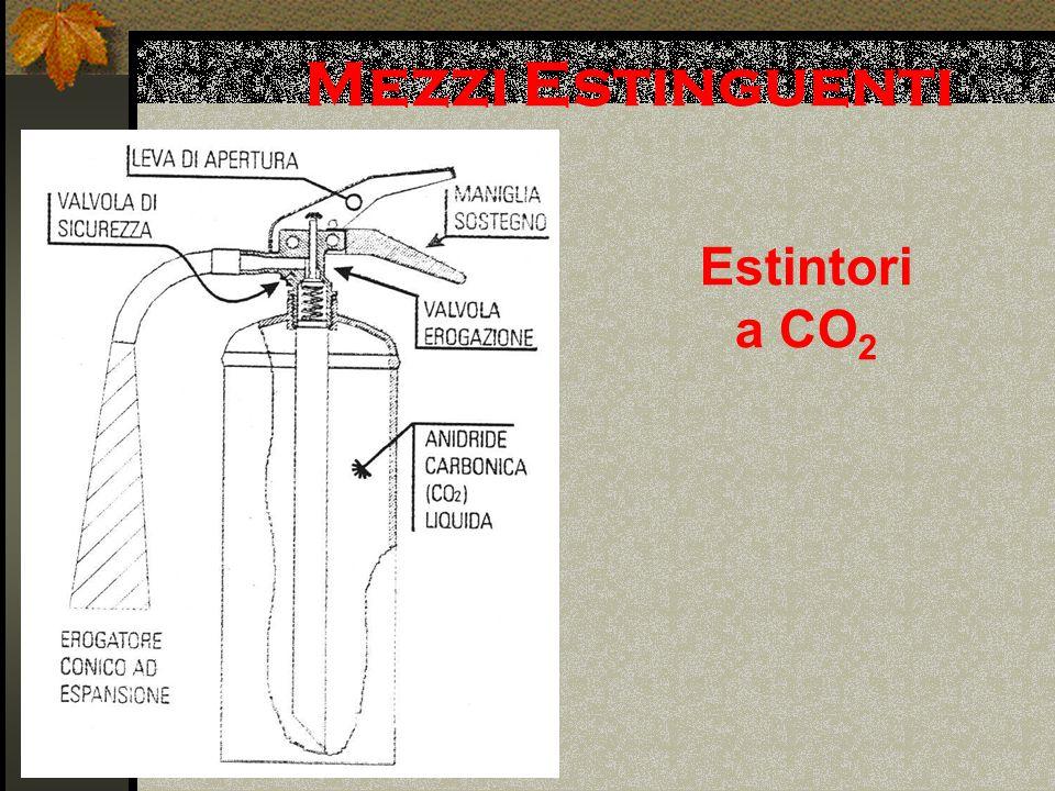Mezzi Estinguenti Estintori a CO2