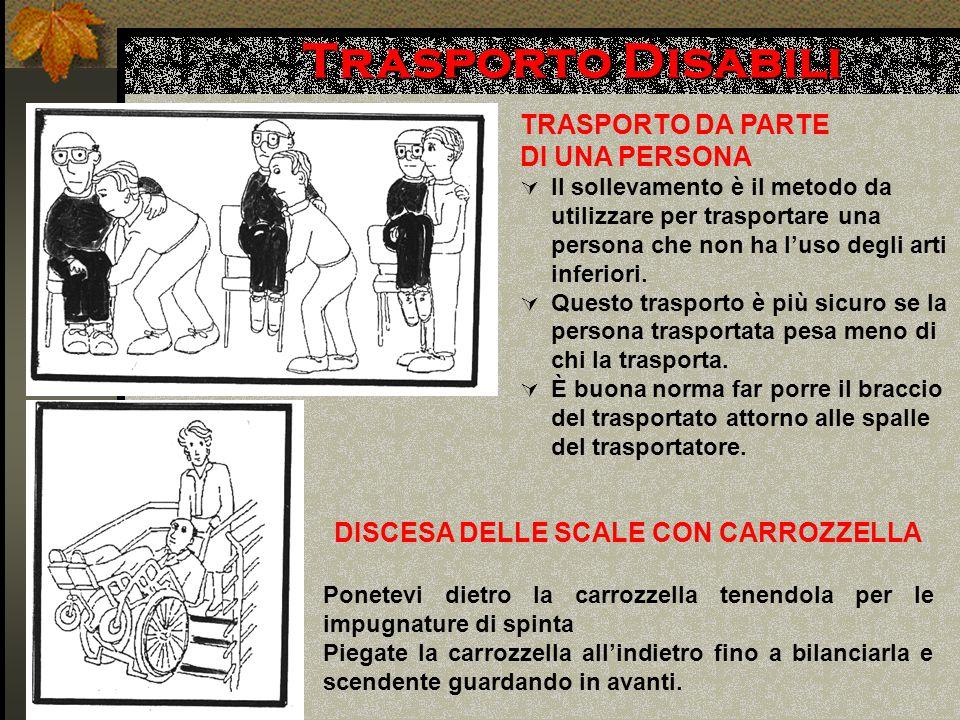 DISCESA DELLE SCALE CON CARROZZELLA