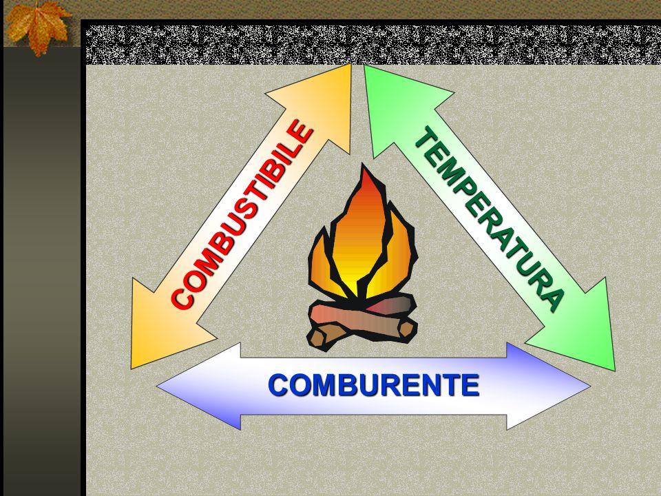 COMBUSTIBILE TEMPERATURA COMBURENTE