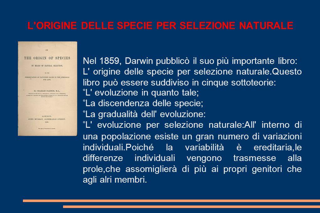 L ORIGINE DELLE SPECIE PER SELEZIONE NATURALE