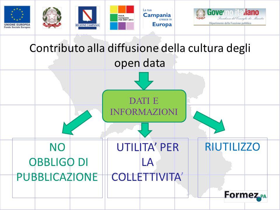 Contributo alla diffusione della cultura degli open data