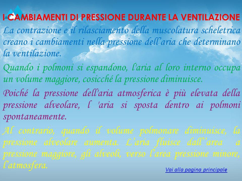 I CAMBIAMENTI DI PRESSIONE DURANTE LA VENTILAZIONE