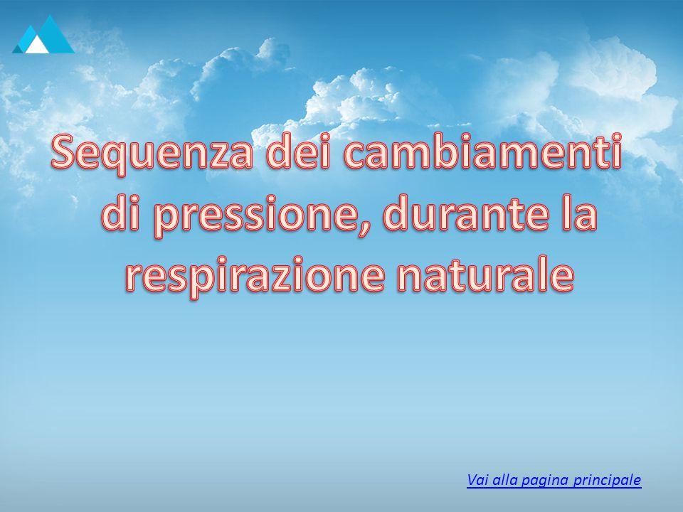 Sequenza dei cambiamenti di pressione, durante la respirazione naturale