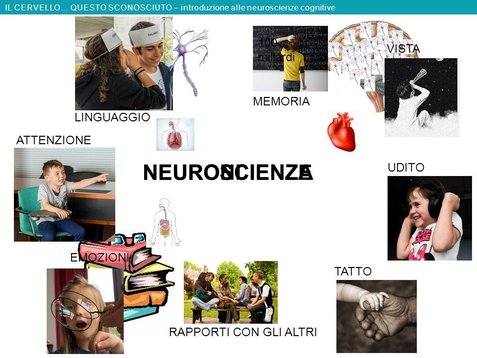 NEURONI NEUROSCIENZE SCIENZA 100 miliardi VISTA MEMORIA LINGUAGGIO