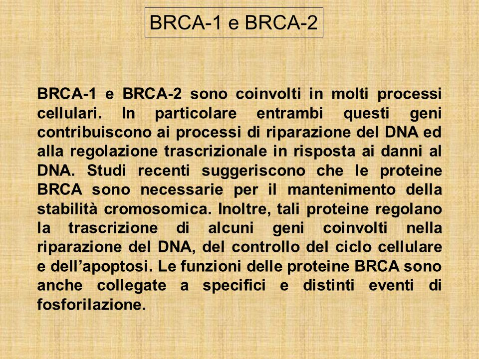 BRCA-1 e BRCA-2