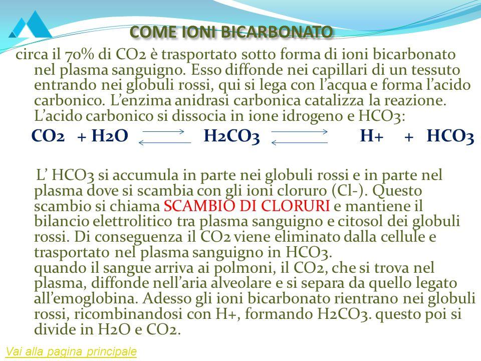 COME IONI BICARBONATO