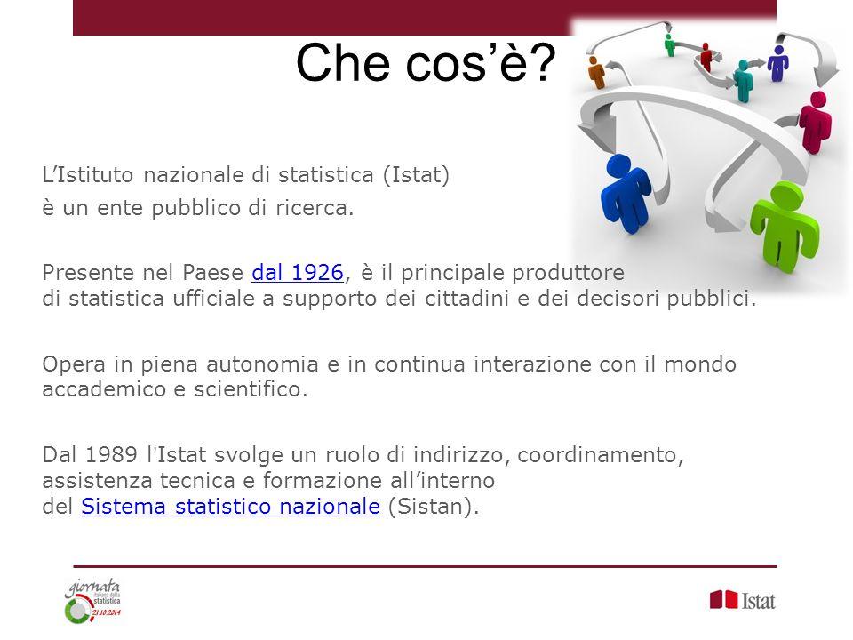 Che cos'è L'Istituto nazionale di statistica (Istat)