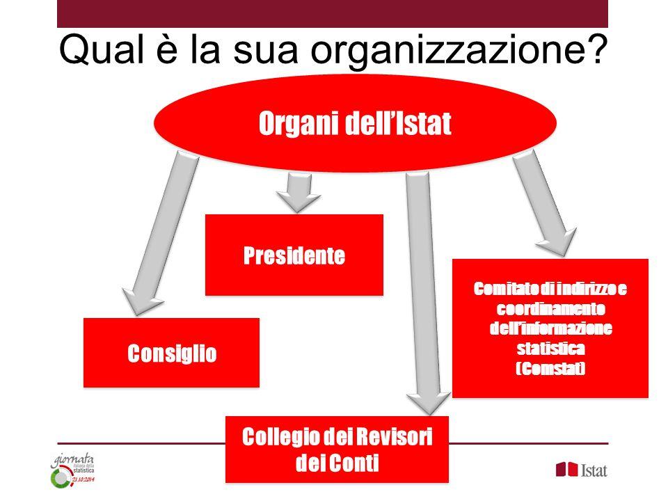 Qual è la sua organizzazione