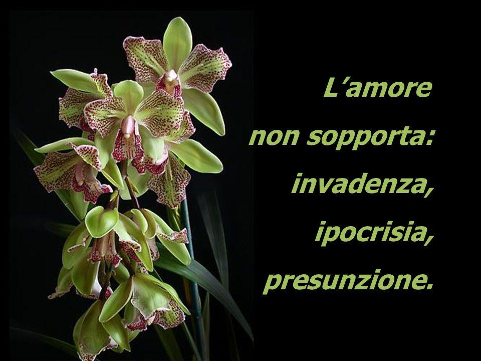 L'amore non sopporta: invadenza, ipocrisia, presunzione.