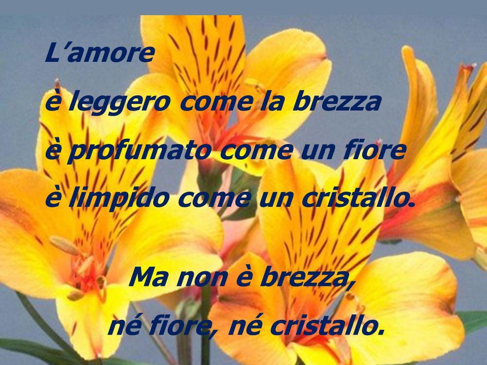 L'amore è leggero come la brezza. è profumato come un fiore. è limpido come un cristallo. Ma non è brezza,