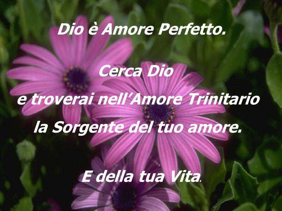 e troverai nell'Amore Trinitario la Sorgente del tuo amore.