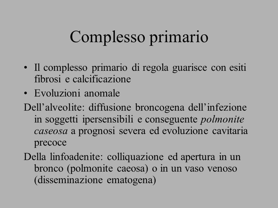 Complesso primario Il complesso primario di regola guarisce con esiti fibrosi e calcificazione. Evoluzioni anomale.